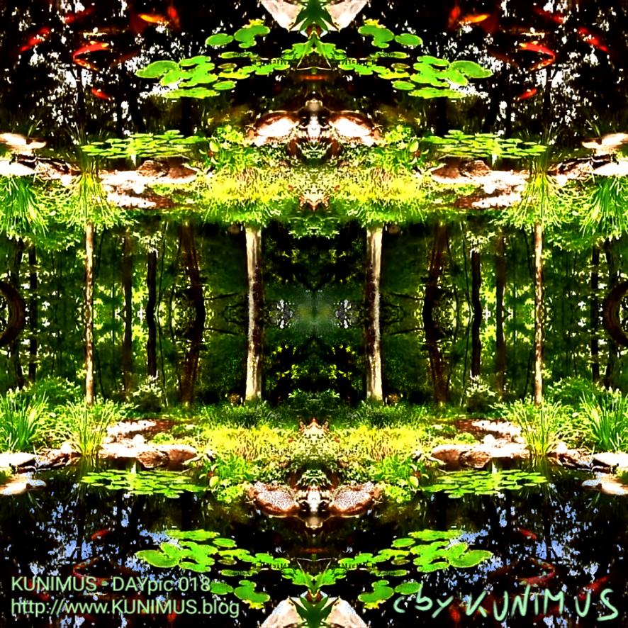 KUNIMUS - DAYpic 018